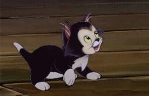 Disney Cat Names