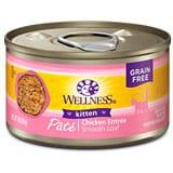 wellness kitten food