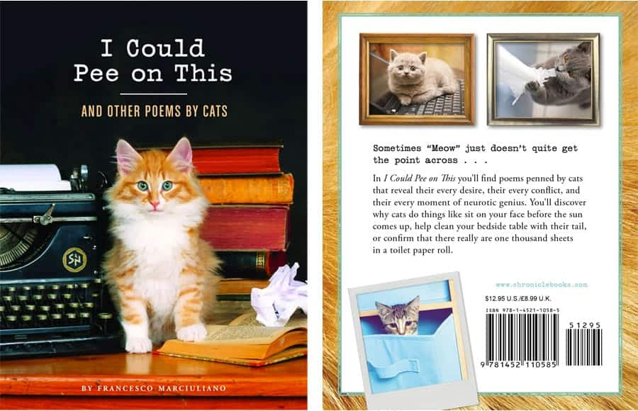 cat poems book