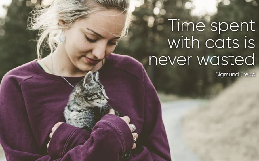 cat quotes - time spent with cats is never wasted - sigmund freud