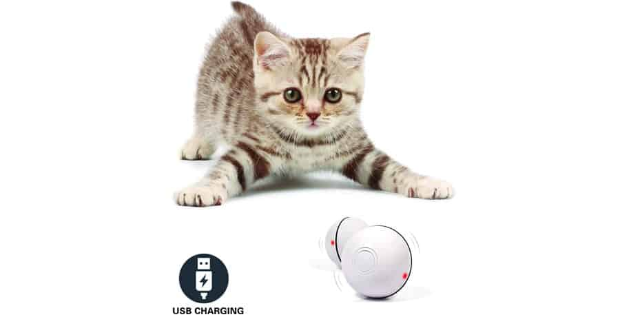 cat christmas presents - automated cat ball