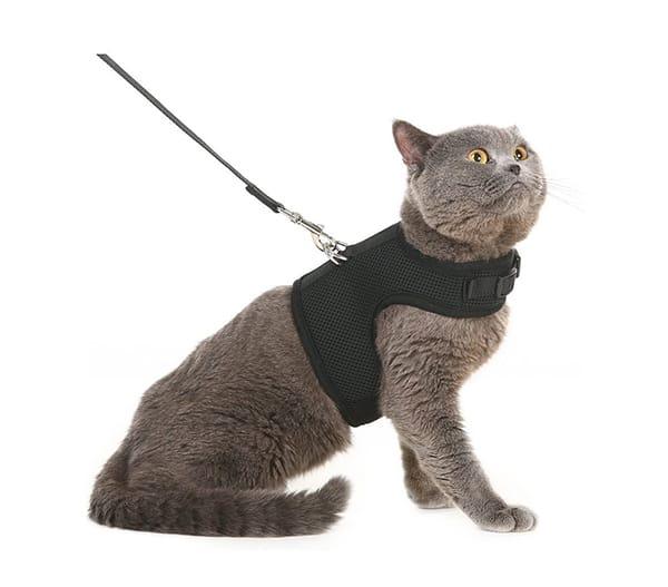 PUPTECK Soft Mesh Vest Harness