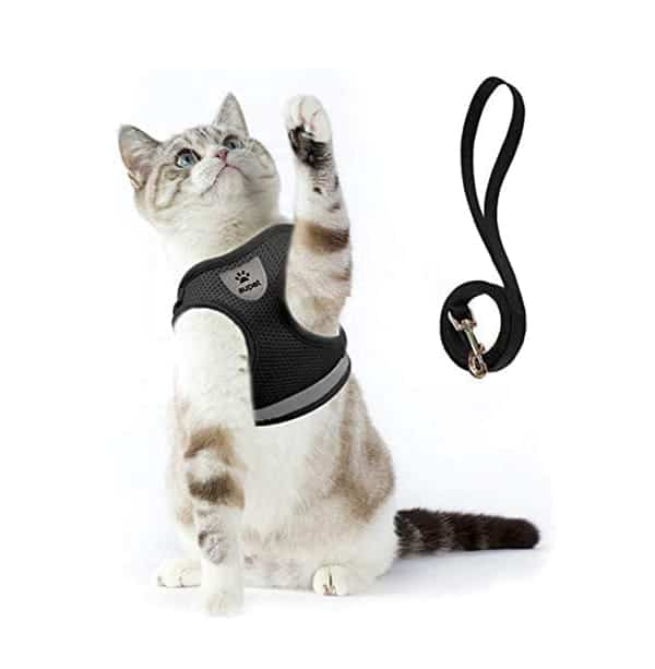 Supet Cat Harness and Leash