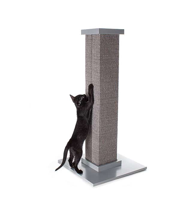 Best Overall Cat Scratching Post